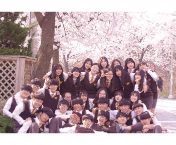 은혜 벚꽃 사진(학급단체) 첨부이미지