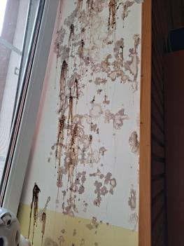유치원 복도 및 6학년 교실 노후 벽체 수리 첨부이미지