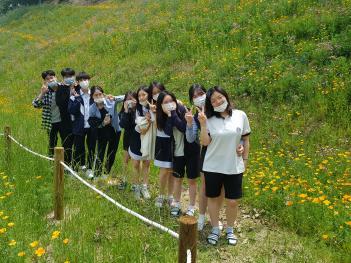 Flowers on GAFL Hills