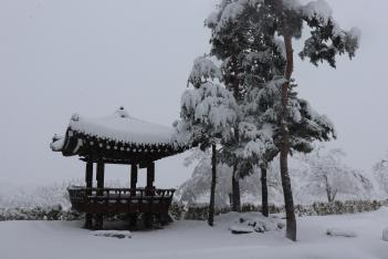 3월 2일 눈 오는 예닮학교의 미리보기 이미지